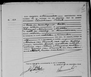 overlijden Adriana van Elewout - 8 nov 1920